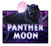 Icon-Panther-Moon